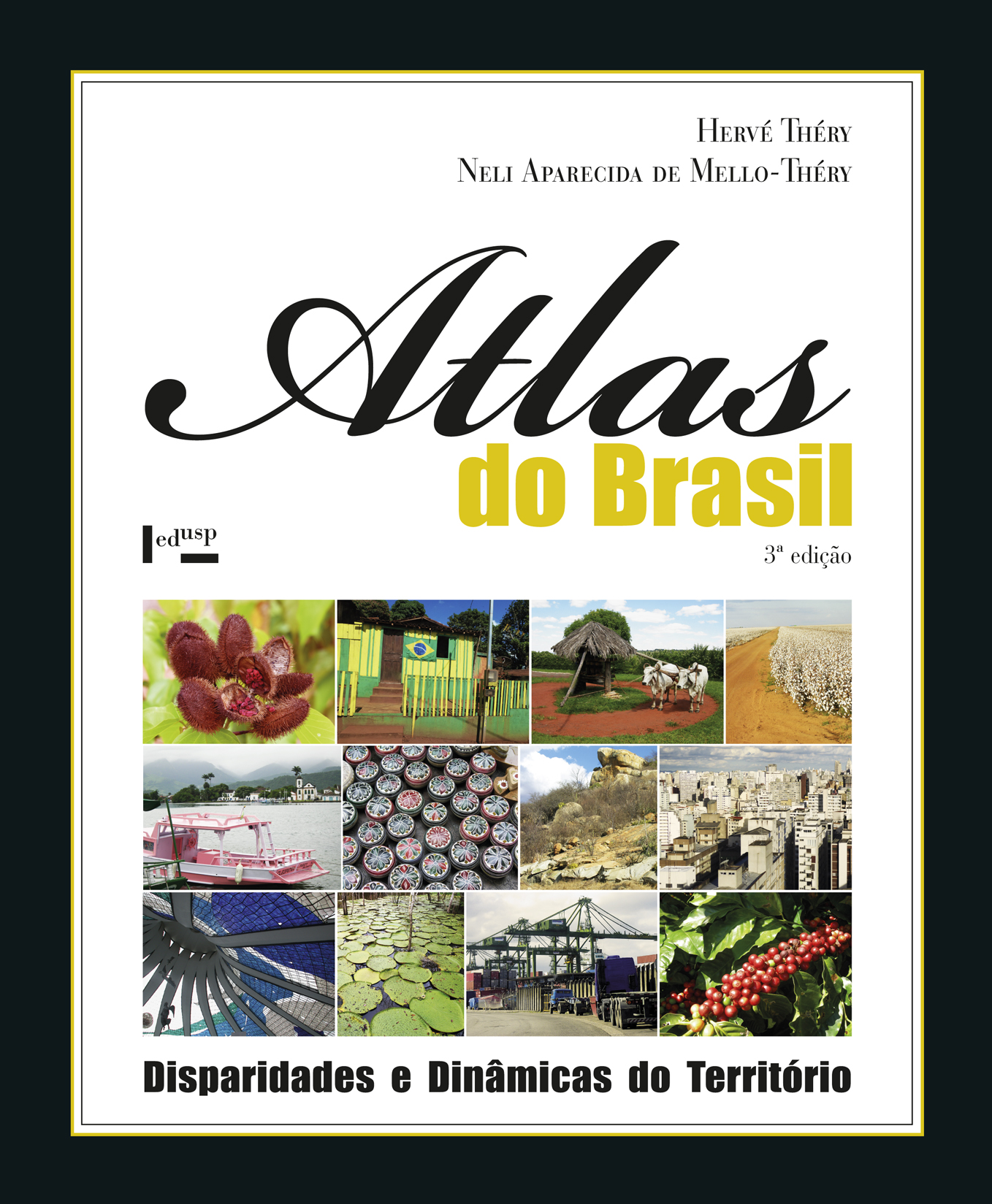 Brazil's Atlas: Disparities and Territory Dynamics
