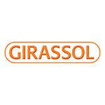 Girassol Brasil